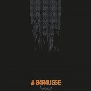 Catalog_Stylebook_barausse_white_designService_Usi
