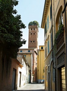 gallery_lucca_1_2